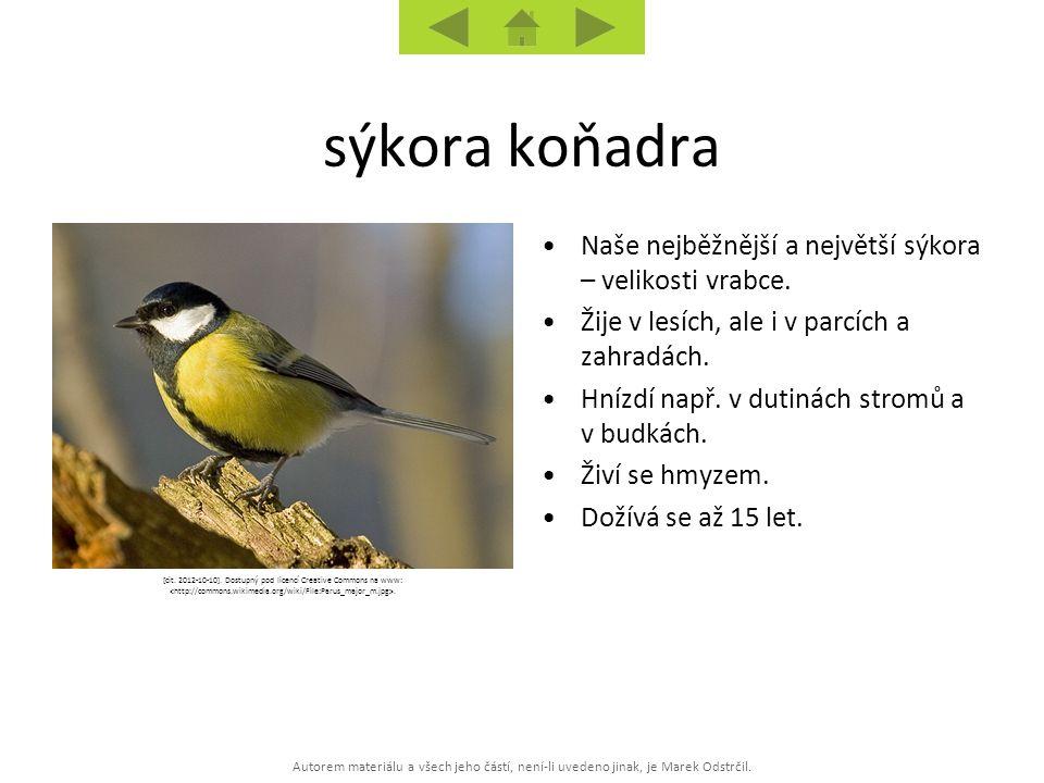 [cit. 2012-10-10]. Dostupný pod licencí Creative Commons na www: